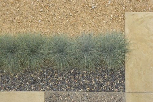 hardscapes denver
