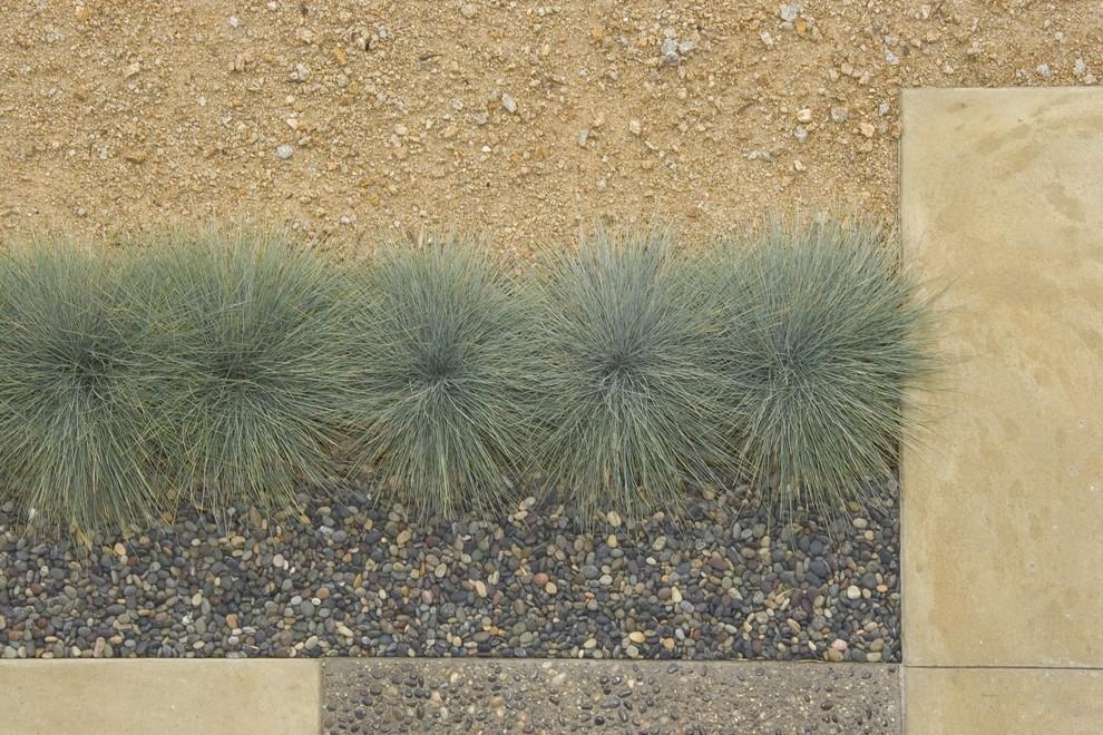 Design ideas for a midcentury modern landscaping in San Luis Obispo.