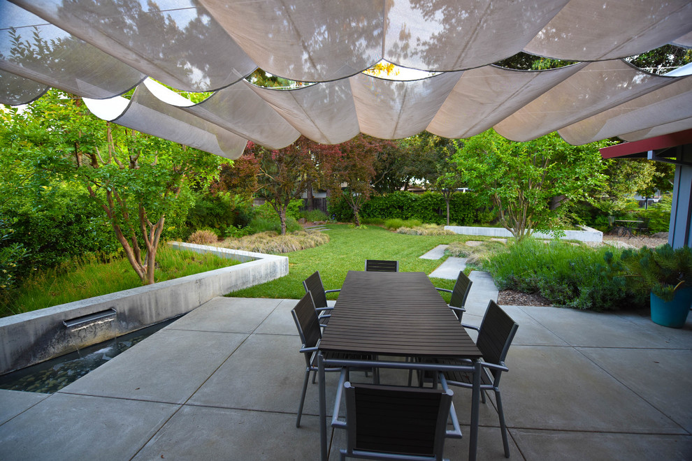 This is an example of a mid-sized modern partial sun side yard concrete paver landscaping in Sacramento.