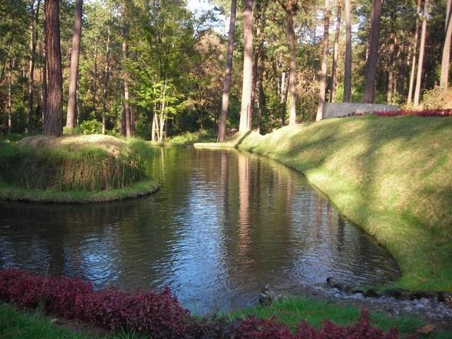 Bosque Verde traditional-landscape
