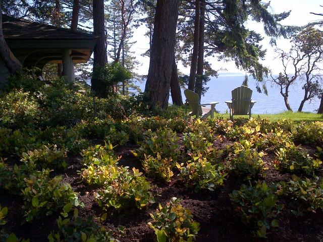 Bowen Island Native Plant Garden Rustic Landscape