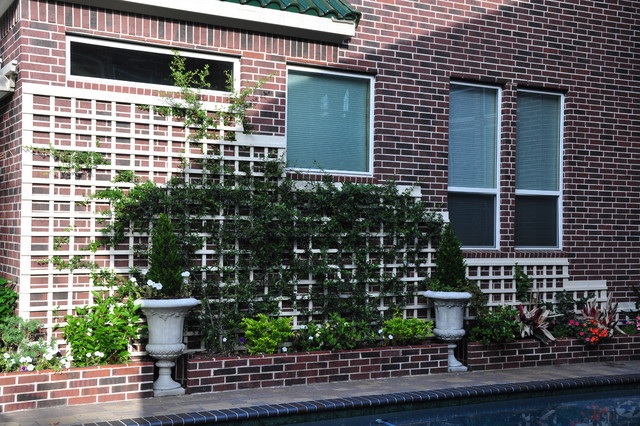 Braeswood Place Pool and Courtyard traditional-landscape