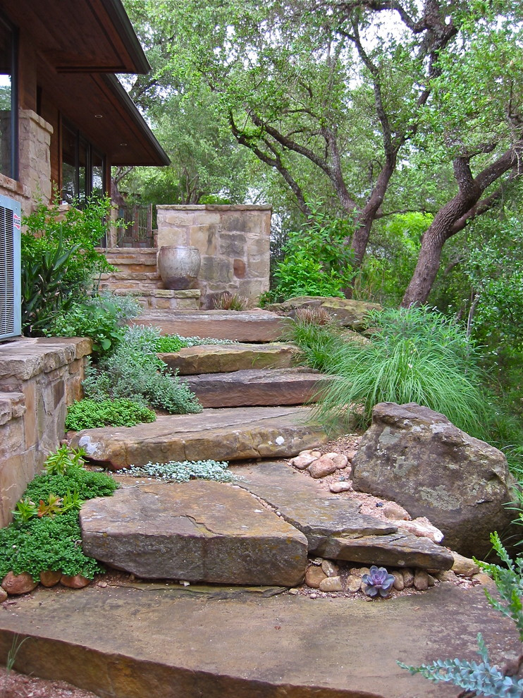 Design ideas for a contemporary side yard landscaping in Austin.