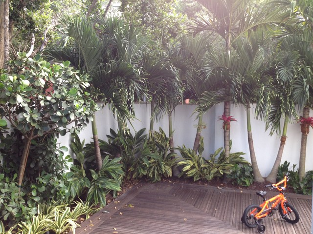 Brickell Residence Tropical Landscape Miami By