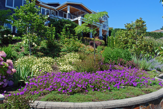Bright new plantings enliven a steep hill traditional-landscape