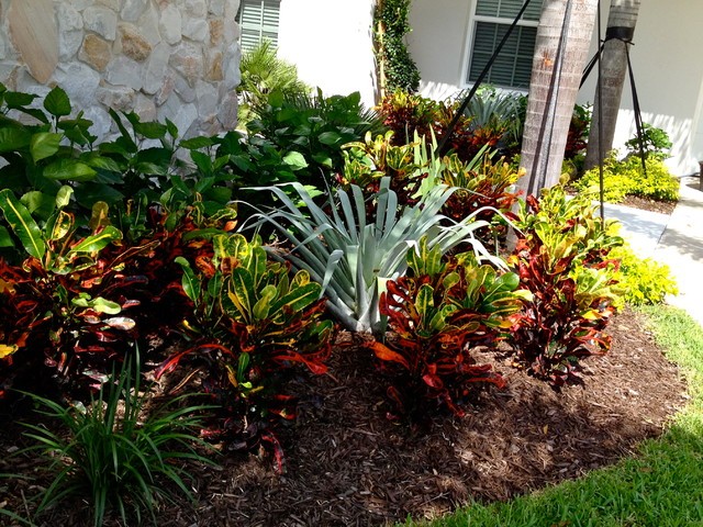 Bromeliad Amp Croton Planting In Vero Beach Tropical