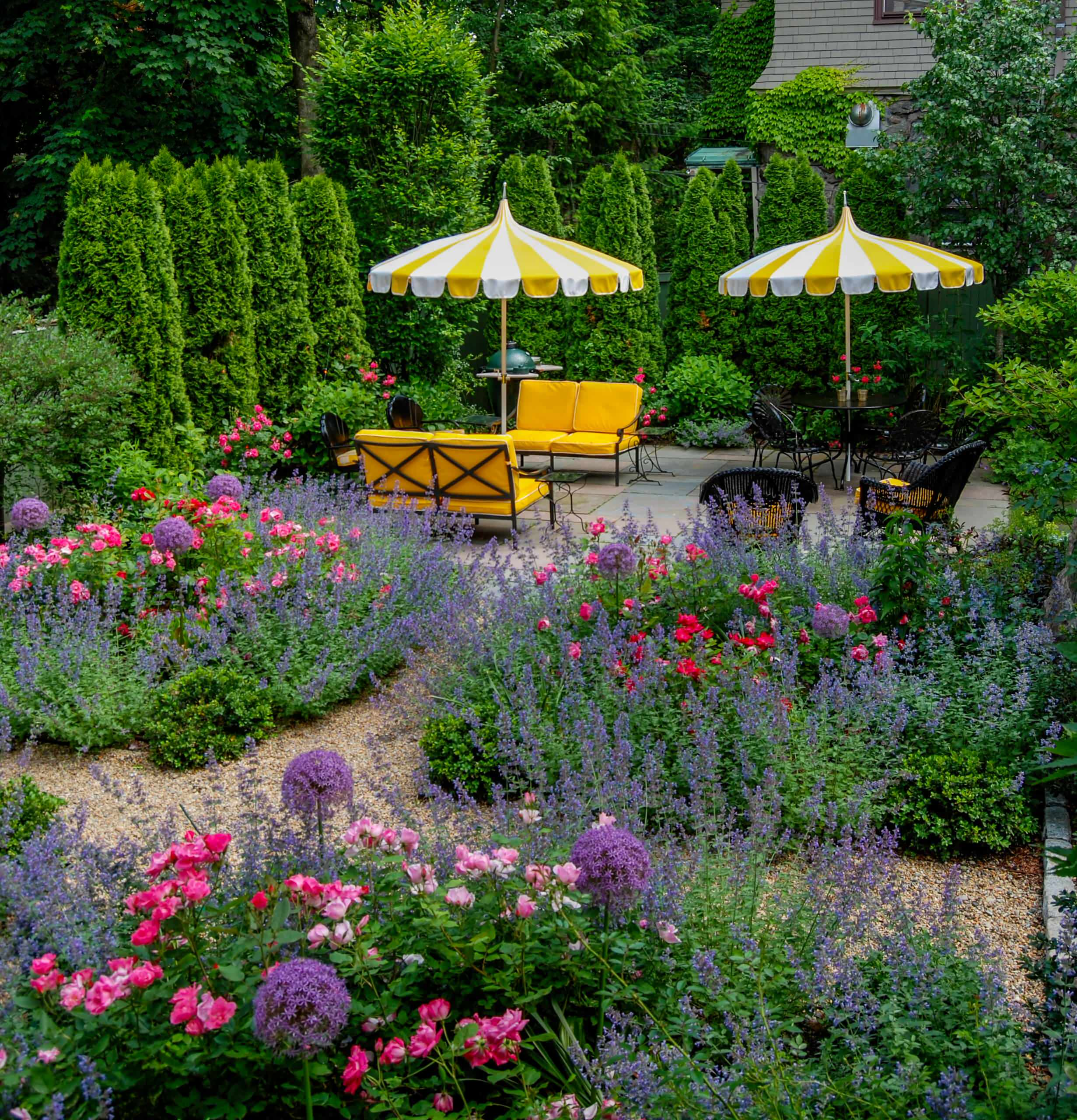 Knockout Rose Landscaping Houzz