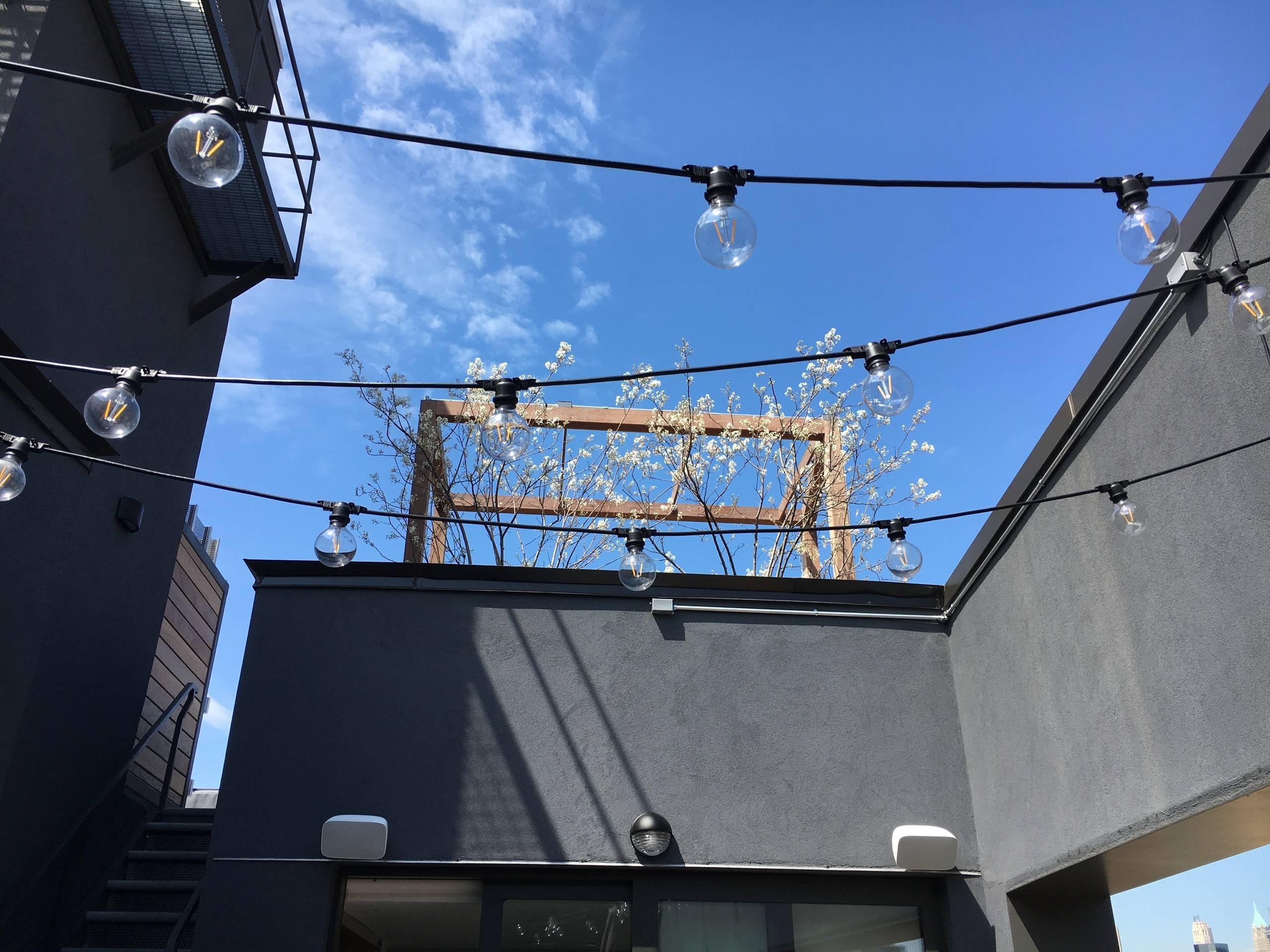Brooklyn 23
