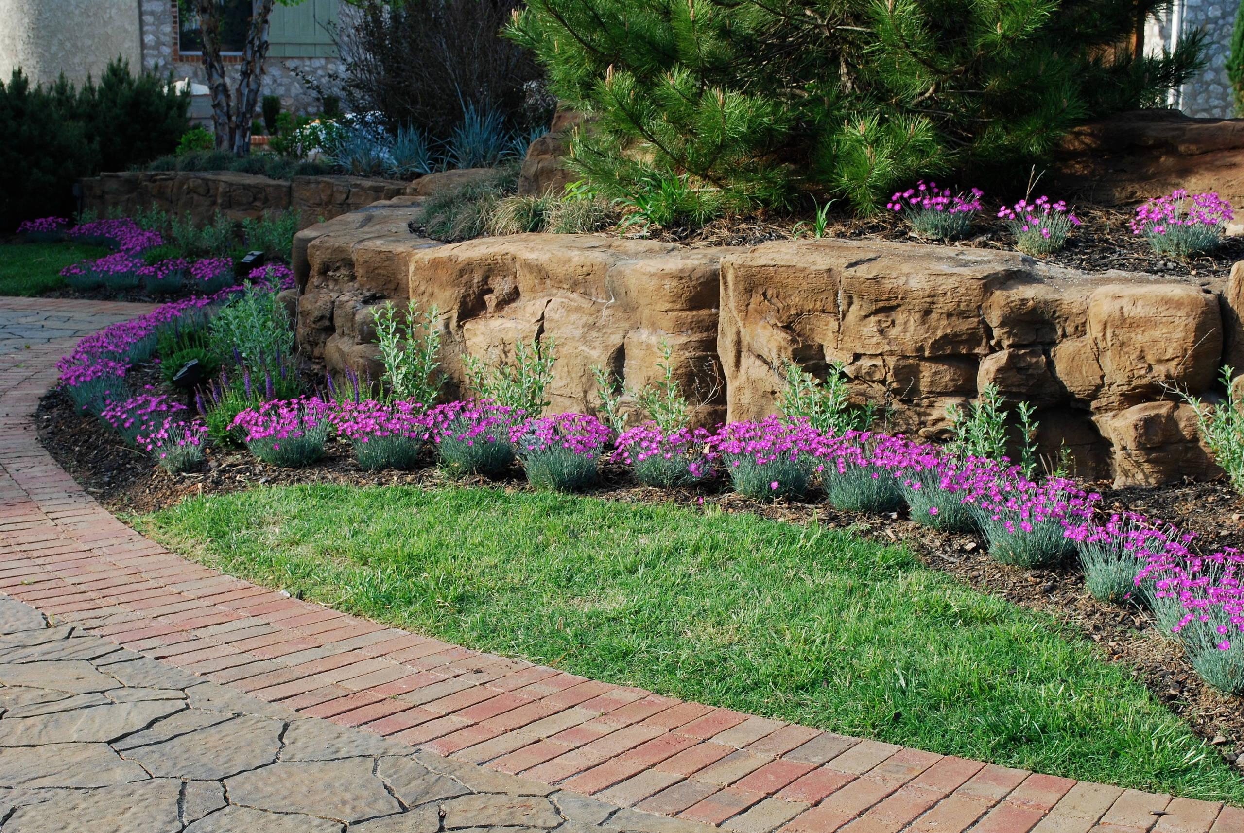 BSR Front Garden 6 months after reno.