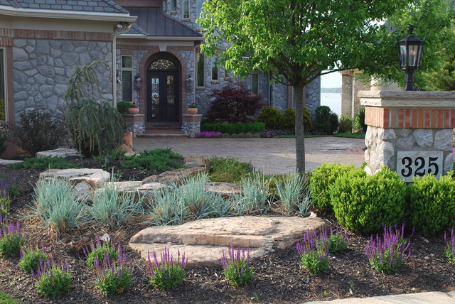 BSR Front Garden 6 months after reno. eclectic-landscape
