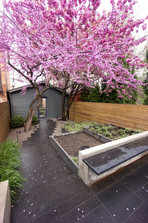 Small Backyard Ideas No Grass Add Value To Your Home - Backyard ideas without grass