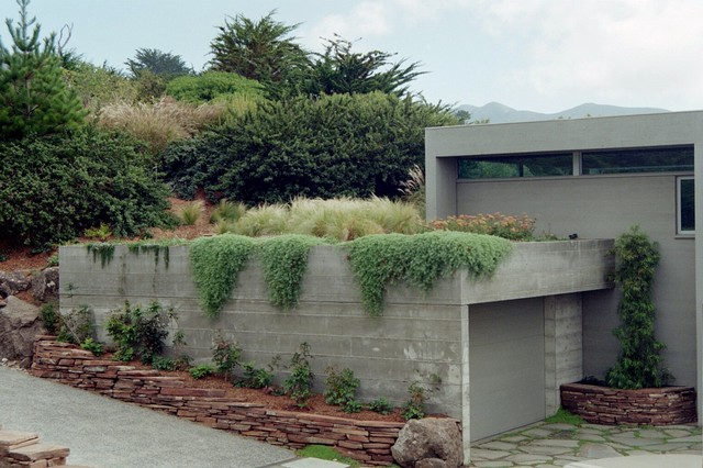 Cain House contemporary-landscape