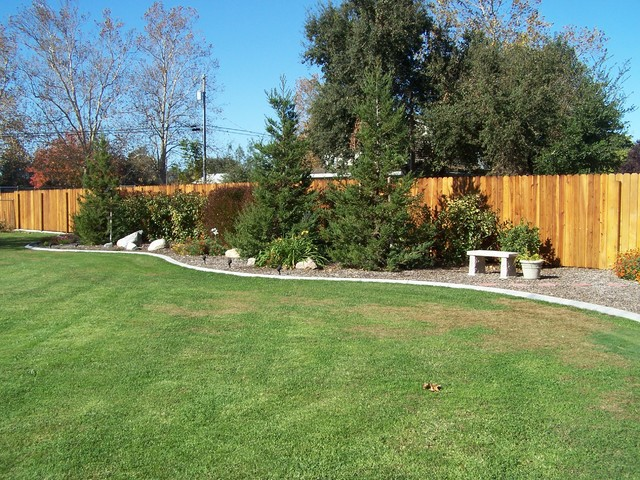 California back yard traditional-landscape