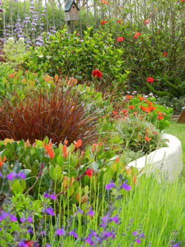 California Cottage Garden Eclectic Landscape Orange