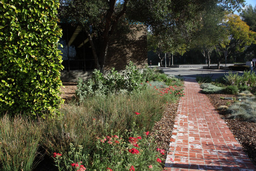 (Drought Tolerant) Gardens of the World