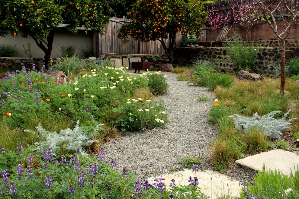 Photo of a mediterranean drought-tolerant backyard gravel landscaping in San Luis Obispo with a fire pit.