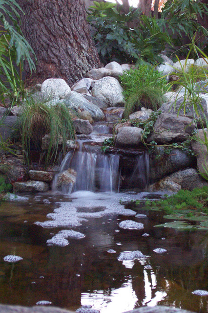 California Waterscapes - Waterfall Gallery traditional-landscape