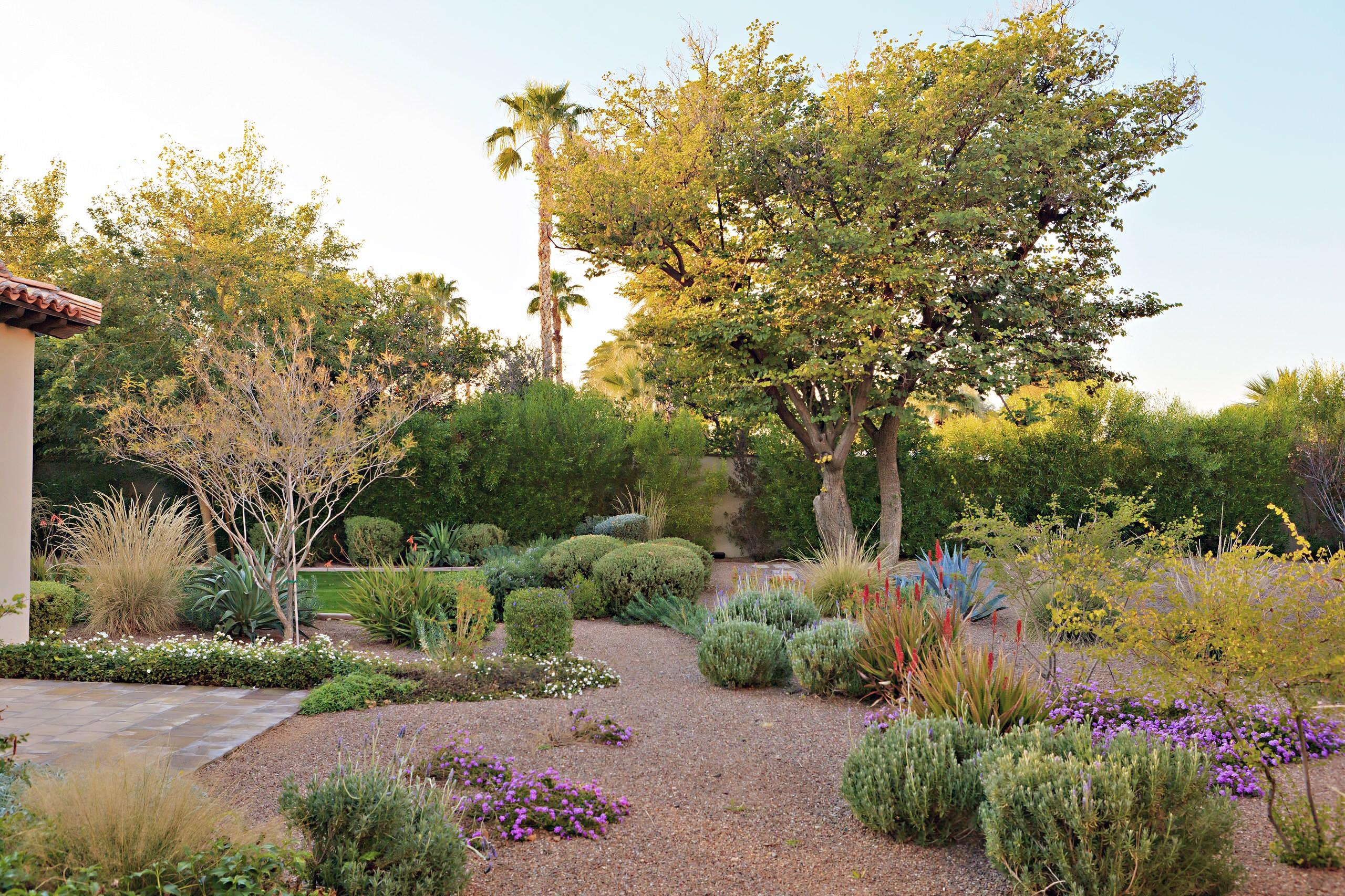 75 Beautiful Desert Backyard Landscaping Pictures Ideas March 2021 Houzz