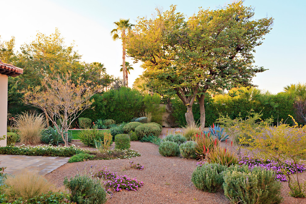 This is an example of a mediterranean drought-tolerant, full sun and desert backyard gravel landscaping in Phoenix.