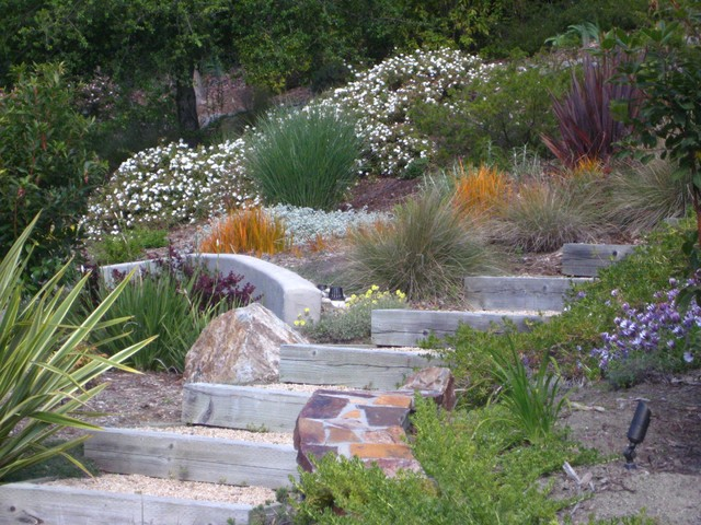 Canyon retreat mediterranean landscape san francisco for Garden designs on a slope
