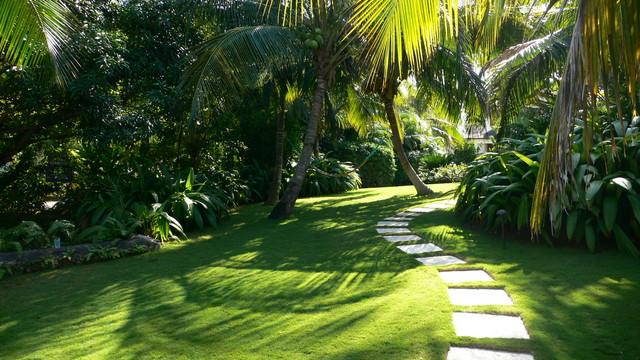 Caribbean Garden