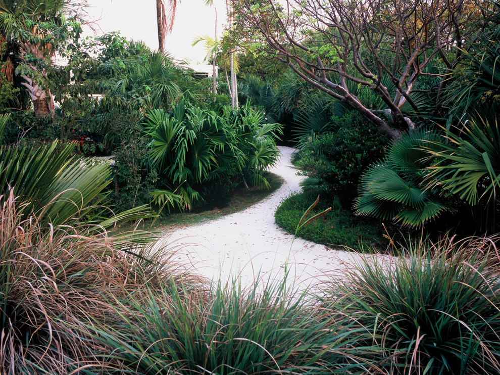 Inspiration for a tropical backyard landscaping in Miami.