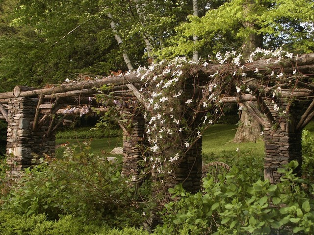 Cascading Jasmine on the Pergola traditional landscape