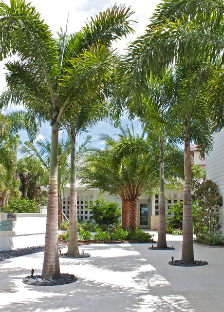 Casey Key Beachfront Home Tropical Landscape Tampa