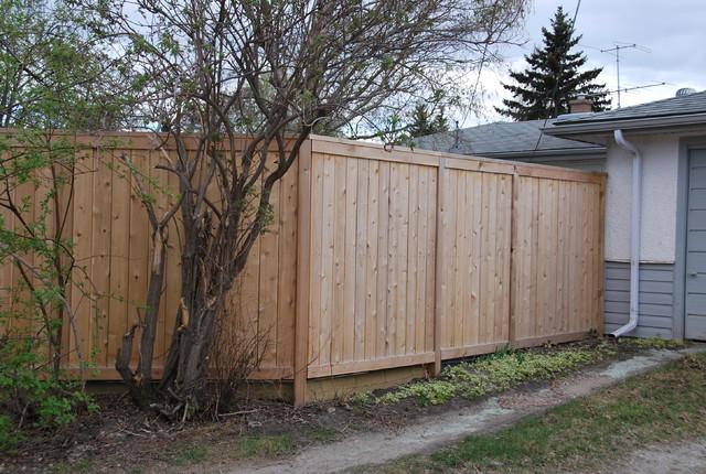 Cedar Fence Clear Finish Contemporary Landscape