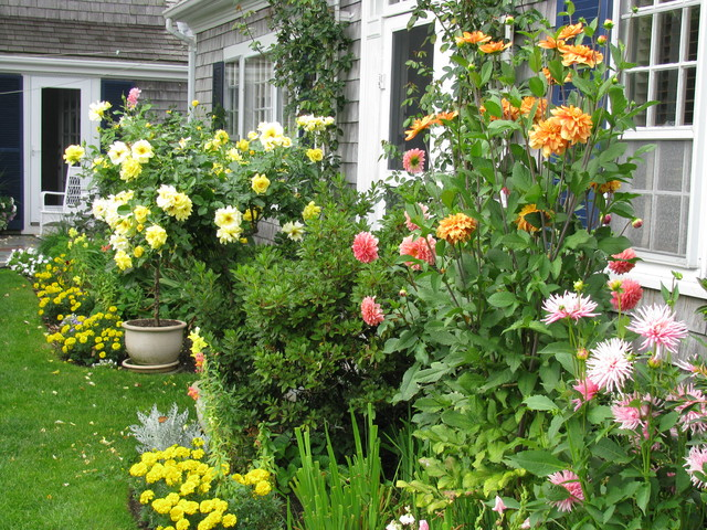 This Is An Example Of A Small Traditional Partial Sun Backyard Landscaping  In Boston For Summer