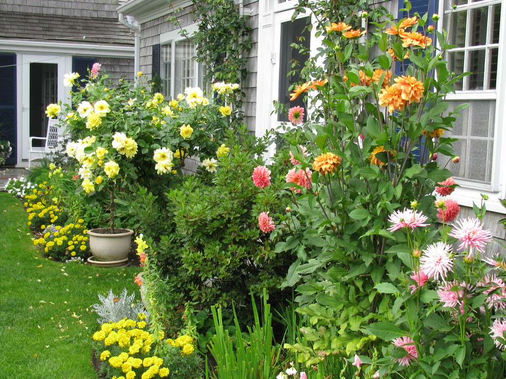 This is an example of a small traditional partial sun backyard landscaping in Boston for summer.