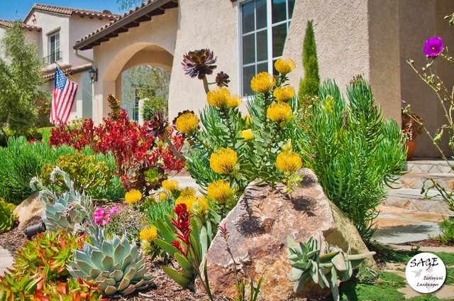 Modern Landscaping With Succulents : Central coast modern landscape succulents traditional