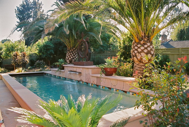 Central Water Feature And Lap Pool Mediterranean