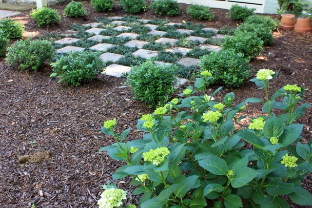 Checkerboard traditional landscape atlanta by for Checkerboard garden designs