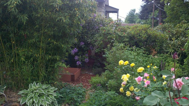 Chere's Cottage Garden traditional-landscape