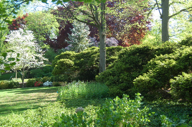 Chestnut Hill Colonial traditional-landscape