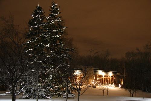 36 фото новогодняя подсветка загородного дома как