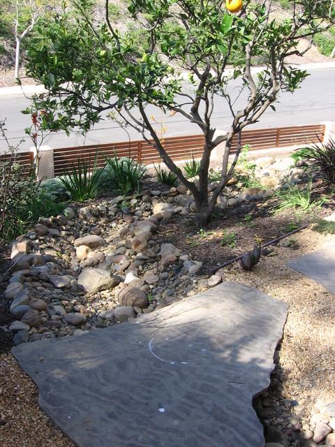 Clairmont Drought Tolerant Garden