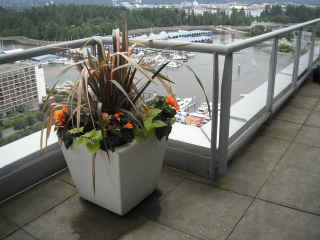 Coal Harbour Penthouse contemporary-landscape
