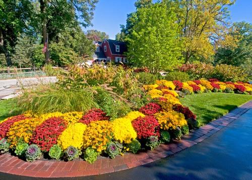 Traditional Landscape by Lemont Landscape Architects & Landscape Designers Premier Service