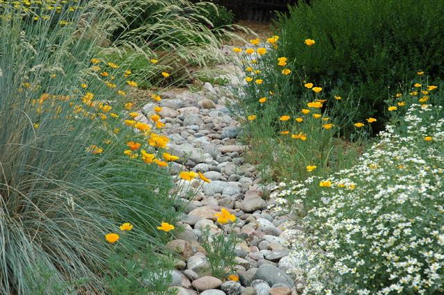 Backyard Landscaping Colorado Springs : Colorado springs xeriscape garden mediterranean
