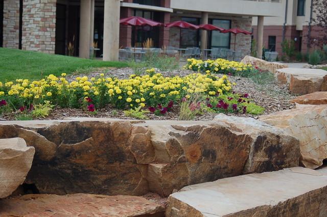 Colorado State University's Academic Village contemporary-landscape