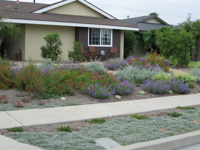 Colorful fountain valley native front yard mediterranean for Colorful front yard landscaping