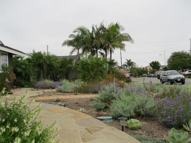 Colorful California Native Front Yard mediterranean-landscape