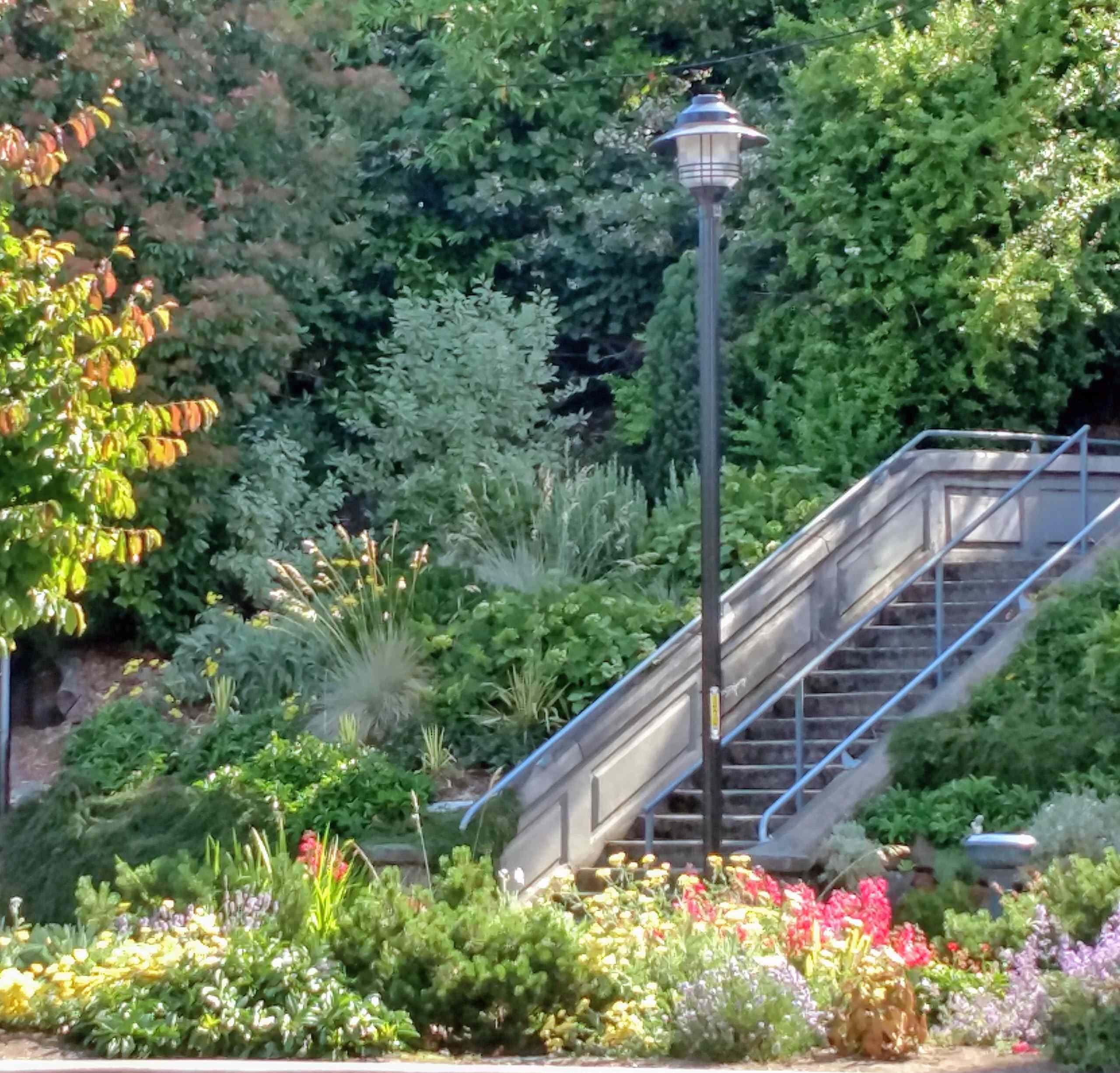 Community Service Public Gardens