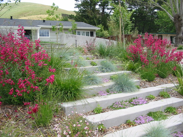Concrete Garden steps contemporary landscape