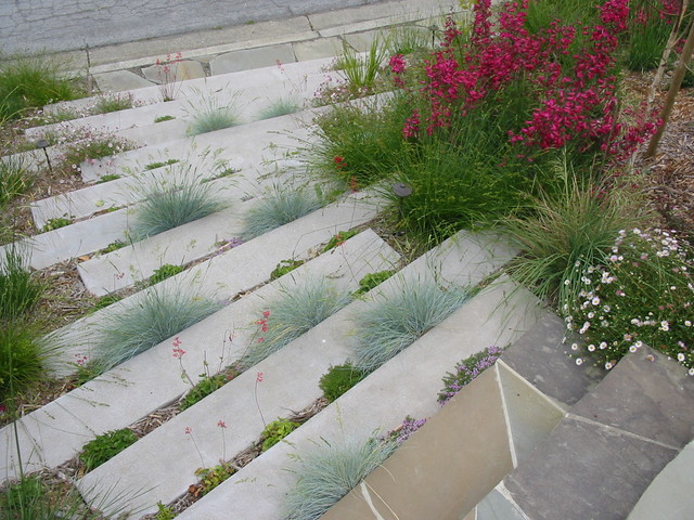 Concrete Garden steps contemporary-landscape