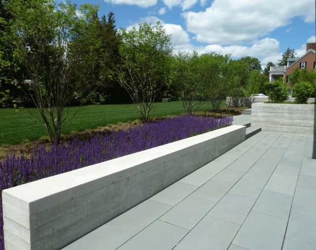 Concrete Seat wall With Sage Modern Landscape Boston