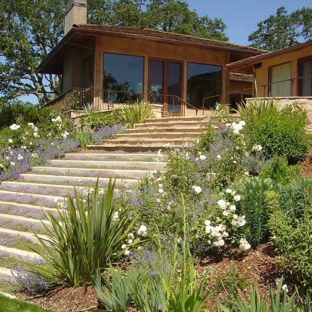 concrete steps contemporary-landscape