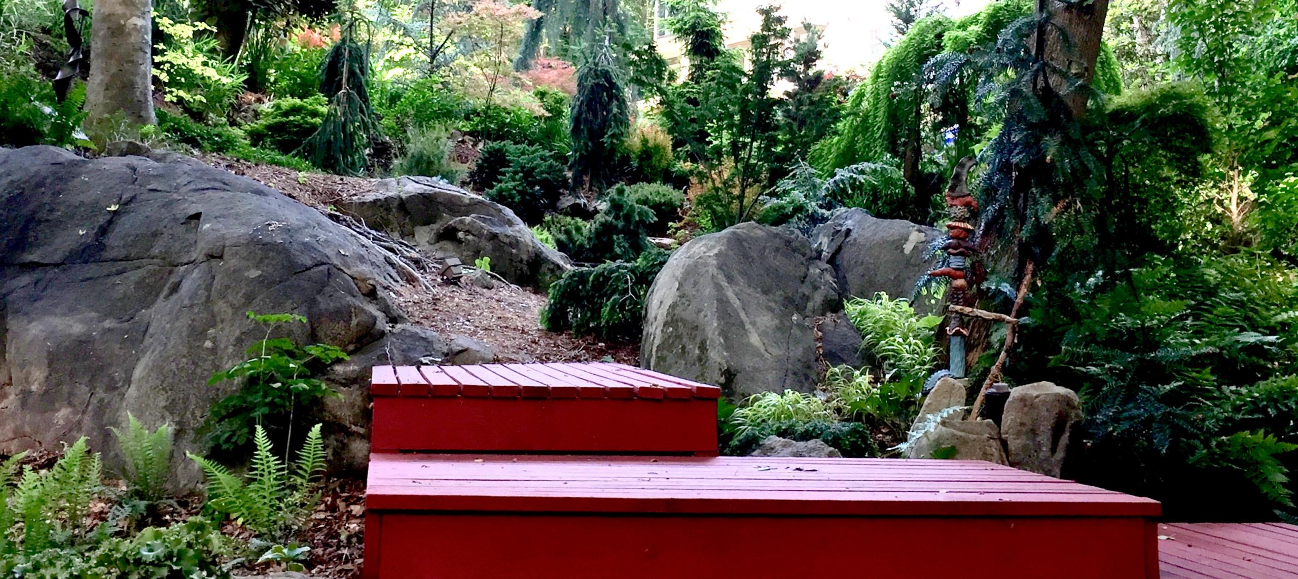 Conifer 'amphitheater'